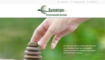 Synergy EVS
